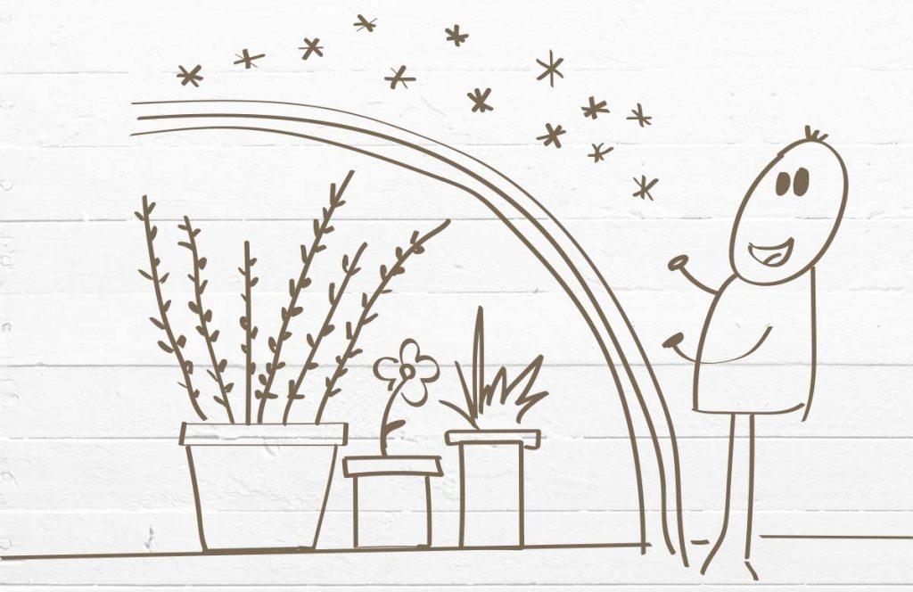 Überwinterung von Pflanzen